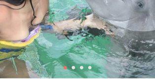 tinder-ragazze-delfini-foto-13